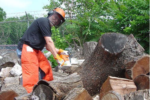 Siegfried puts to good use the chainsaw and protective gear that Stihl donated.
